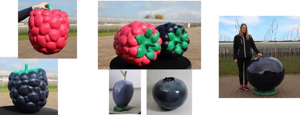 Overig fruit